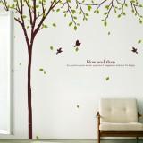 [그래픽스티커-꾸밈]ph108-행복한 자작나무숲(나무한그루)